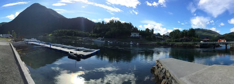 Uferangeln in Norwegen
