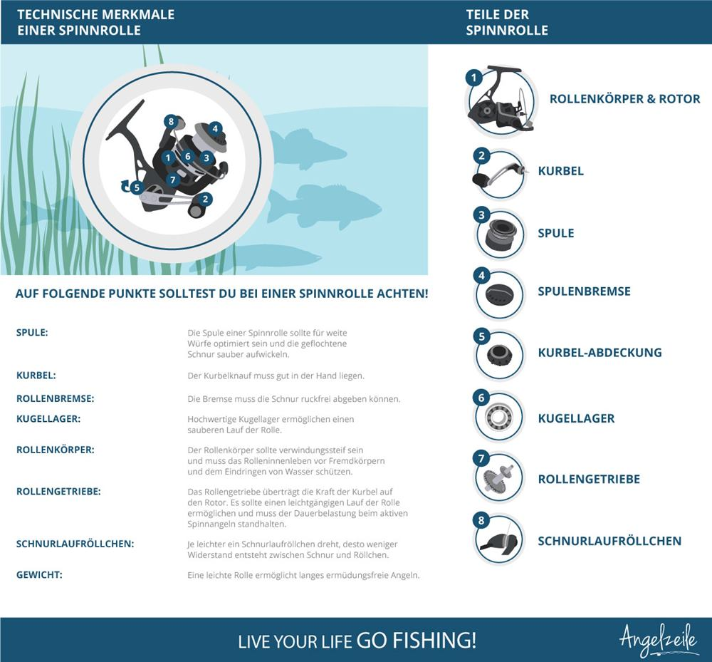 Infografik Spinnrolle - Daten & Tipps zur Spinnrolle